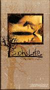 Such Is Life - DVD
