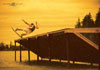 Josh Letchworth - Danny Harf Wakeboarding Poster