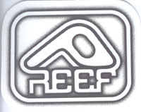 Reef - 3